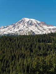Mount Rainier (wirehead) Tags: 14150mm em5mk2 mountrainier mountain landscape scenery mountrainiernationalpark