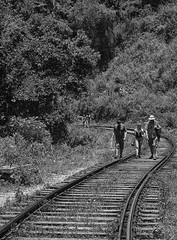 Walk the line (ORIONSM) Tags: railway railroad tracks line walk people srilanka asia monochrome blackandwhite olympus omdem1