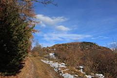 Chemin-Dessus (bulbocode909) Tags: valais suisse chemindessus montchemin montagnes nature chemins forêts arbres automne nuages neige bleu vert orange villages maisons chalets