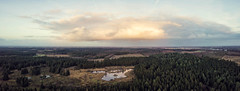 Sunday panorama (HenrikHansen) Tags: forest trees winter dji mavic drone drones denmark jutland padborg frøslev lake sky clouds panorama grass landscape nature