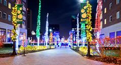 Columbus Commons (brutus61534) Tags: columbus commons ohio christmas lights night