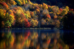 Enlightened visions of the morning (Captions by Nica... (Fieger Photography)) Tags: reflections reflection water serene forest fall autumn trees tree nature outdoor landscape lake mountain quebec canada
