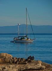 RICH MAN POOR MAN (akahawkeyefan) Tags: homeless yacht saliboat monterey log sea davemeyer shoes socks