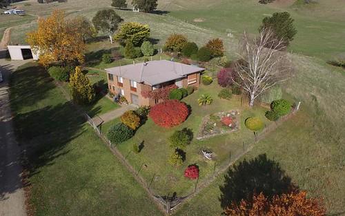 Christmas Hill - 120 Bago Forest Road, Tumbarumba NSW