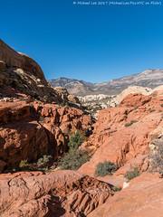 Red Rock Canyon (20171111-DSC02416) (Michael.Lee.Pics.NYC) Tags: redrockcanyon conservationarea sandstone lamadremountainrange canyon valley nevada lasvegas sony a7rm2 fe2470mmf28gm