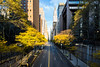 Autumn in the City. (Blende4.0) Tags: newyork tree autumn yellow city urban street chrysler building manhattan
