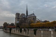 Notre-Dame de Paris (elliott845) Tags: notredamedeparis notredame paris europe france cathedral architecture fall autumn seine clouds