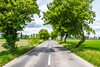 Cesta 3 triedy (mszucs) Tags: road countryside concept tree landscape summer background trees nature forest scene green growth light beautiful country avenue sun way color alley grass slovakia park environment leaves rays evening beauty nikonblog122017