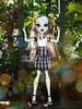 (Linayum) Tags: frankie frankiestein mh monsterhigh monster mattel doll dolls muñeca muñecas toys juguetes linayum