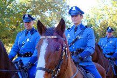 Veterans Day Parade, Boston 2017 (brooksbos) Tags: animal horse police mountedpolice lawofficer boston brooks brooksbos veteransday veteran parade cybershot dscrx100m2 geotagged massachusetts newengland nice portrait public rx100m2 rx100 sony equestrian