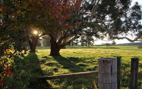 1186 Charleys Forest Road, Braidwood NSW