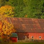 Autumn Barn 4744 B thumbnail