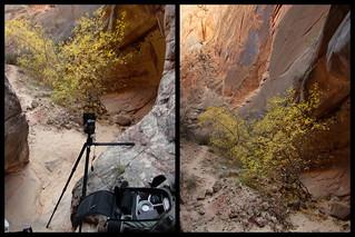 Canyon photography