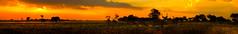 Botswana Sunset (PhilHydePhotos) Tags: africa botswana elephant okavangodelta safari shindecamp wildlife dusk sunset