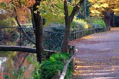 Automne au jardin des plantes, Toulouse (jpto_55) Tags: jardindesplantes toulouse france hautegaronne bokeh fuji fujifilm xe1 omlens om135mmf28