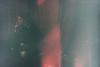 (inés mihalik) Tags: 35mm analog analogue analógico film mujer rojo woman night doble exposición montevideo uruguay urban