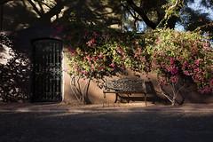 Pocket of Light (eph2810) Tags: light scottsdale arizona bench photowalk