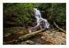 Log Hollow Falls (John Cothron) Tags: americansouth brevard cpl canoneos5dmkiv carolinas cothronphotography distagon2128ze distagont2821ze dixie johncothron nc northcarolina pisgahgameland pisgahnationalforest southatlanticstates southernregion thesouth transylvaniacounty us usa unitedstatesofamerica zeissdistagont2821ze afternoonlight autumn circularpolarizingfilter clouds cloudyweather deadtree environment fall falling flowing forest landscape leaves log longexposure mineral nature outdoor outside protected quartz rock rockformations scenic water waterfall img20609170929 ©johncothron2017 loghollowfalls