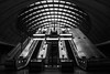Way out (marktmcn) Tags: exit entrance escalators canary wharf tube station underground lights arch arching curved skylight norman foster architect way out blackandwhite monochrome d610 nikkor 28300mm