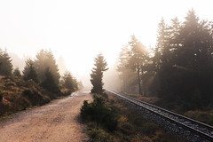Der Weg zum Brocken (Gruenewiese86) Tags: 2017 brocken harz nebel wald instameet explore exploreharz nebelwald neverstopexploring sunbeam sonnenstrahlen sonnenlicht imharz instahike