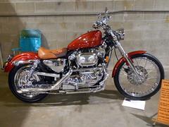 1999 Harley-Davidson Sportster (splattergraphics) Tags: 1999 harleydavidson sportster motorcycle custom harley carshow eastcoastindoornationals marylandstatefairgrounds timoniummd