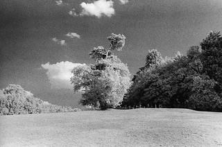 Beckenham place park