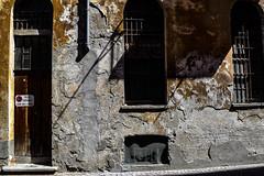 Giove_Vincenzo_528#5