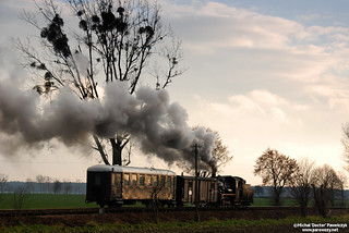 Shiny train