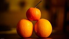 vivid orange (YᗩSᗰIᘉᗴ HᗴᘉS +9 500 000 thx❀) Tags: vividorange smileonsaturday orange samyang sony 50mm fruit trio three trois triplet food hensyasmine