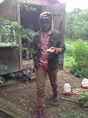 Drew in the chicken yard (elizajanecurtis) Tags: chickencoop drew friends gorham