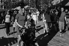 dod 09816 (m.r. nelson) Tags: dayofthedead diadelosmuertosmesa az arizona southwest usa mrnelson marknelson markinaz blackwhite bw monochrome blackandwhite bwartphotography portraits peopledíadelosmuertosfestivalmesa2017