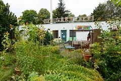 """Her mit dem guten Leben – für alle?! Solidarischer Wandel und Teilhabe von Geflüchteten • <a style=""""font-size:0.8em;"""" href=""""http://www.flickr.com/photos/130033842@N04/38336152726/"""" target=""""_blank"""">View on Flickr</a>"""