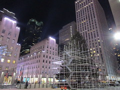 2017 Christmas Tree Rockefeller Center NYC 3648 (Brechtbug) Tags: 2017 christmas tree rockefeller center before lights 11112017 nyc 30 rock new york city standing up above ice rink with snow shoveling workers skating holiday decoration ornaments night lites light oversize load ornament prometheus gold mythological statue sculpture fountain fountains scaffolding scaffold pre thanksgiving