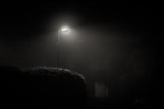 013/365 - 13 January: The night is dark, and full of terrors