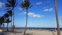 Hollywood Beach, Hollywood Florida (renedrivers) Tags: renedrivers rchan415 hollywoodbeach florida