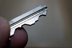 sawyer key (4inthehouse) Tags: fingers saw key fingertips macro macromondays