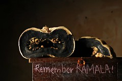 Remember Kamala (Studio d'Xavier) Tags: rememberkamala pumpkin mold stilllife strobist