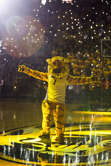 untitled (christinalong15) Tags: ncaa sec basketball missouri mizzou college athletics sports sport action