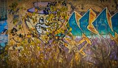 top cat (peter manintveld) Tags: fujixt2 fujixf100400mmf4556rlmoiswr xt2 aurorahdrpro grafitti lens portugal topcat kleuren colours cat kat graffity