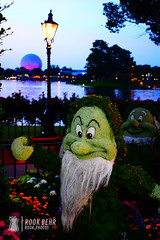 Grumpy Topiary at Night at Epcot (rook.behr) Tags: disneyworld lightsandlamps topiary flower epcot outdoors streetlamp colorfullighting spaceshipearth grumpy flowers light lighting lights outside plants