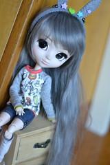 Kyoto (-gigina-) Tags: doll pullip saphire anime nikon d3100 50mm obitsu rewigged rechipped cute totoro grey muñeca