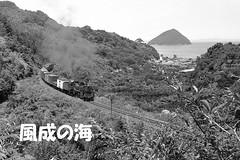 kemuri072 (railbus asano) Tags: railway jnr d51 sea island
