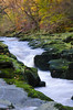 The Strid (andythomas390) Tags: autumn thestrid boltonabbey northyorkshire yorkshiredales orange yellow colours nikon d7000 18200mm