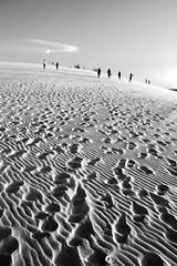 Moonwalk (alestaleiro) Tags: pisadas pegadas huellas arena desierto desert duna dune textures texturas silouhettes jericoacoara jeri sombras shadows people brasil ceará alestaleiro monochrome monocromo bw bianconero pb