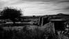 Silver Valley Mine (Rogpow) Tags: cornwall mine minions silvervalleymine bodminmoor tinmine tin wolfram wolframmine newphoenixmine cornishmining cornishmines cornishminingworldheritagesite ruin abandoned derelict industrialarchaeology industrialhistory industrial mono blackandwhite bw moorland isolated barren desolate moody royalcanadianengineers landscape old bnw