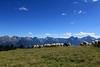 Val d'Aosta . Valle di Saint Barthlemy: scendendo dal Col Chaleby (mariagraziaschiapparelli) Tags: montagna mountain valdaosta valledisaintbarthlemy colchaleby allegrisinasceosidiventa escursionismo camminata colle estate pecore