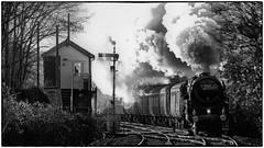 Passing Tram Inn Signal Box (Welsh Gold) Tags: 70113 olivercromwell br standard class 7 bristol temple meads chester christmas steam charter tram inn signal box hereforshire