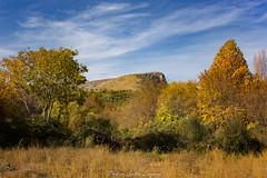 Fuentes del Marques_ 26112017-157-Editar (Pyass2015) Tags: caravaca fuentesdelmarques bosque forrest landscape parque murcia autum otoño
