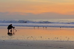Shooting The Photographer (Christina's World-) Tags: landscape sunset ocean outdoor beach seascape birds waves scenic sky photographer realpeople lowtide kingtides california sandiego usa reflections sandpiper sea water sand goldenhour