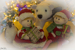 Little bit of Christmas Fun (mattpacker1978) Tags: christmas tree decorations noel crimbo elves polar bear penguin gifts presents home love family december canon canondigital canon700d canonphotography canonlife 24105 animal toy festive